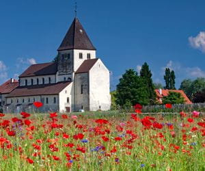 Poppy field and small castle