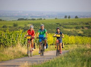 Radfahrer in der Pfalz