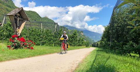 Radfahrer in Südtirol durch Apfelgärten