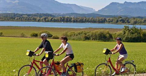 Radfahrer auf Radweg nahe Breitenbrunn