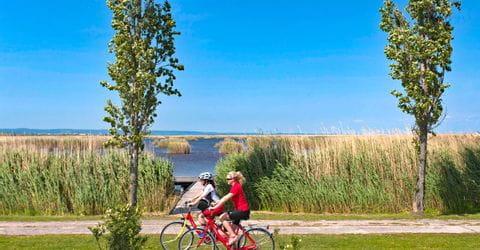 Zwei Radfahrerinnen am Schilfufer des Neusiedlersees