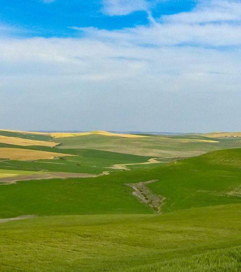 Impressionen Landschaft Andalusien