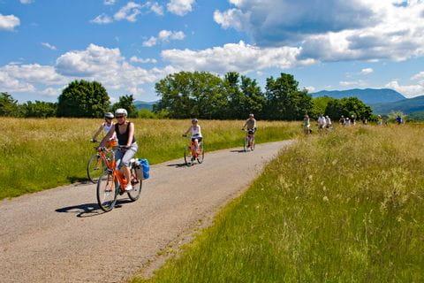 Radfahrergruppe radelt durch Getreidefelder