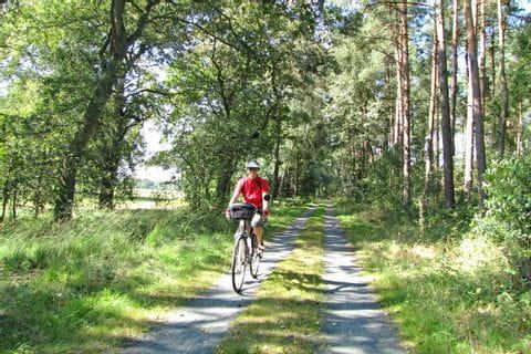 Radfahrer unterwegs in der Lüneburger Heide