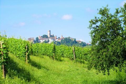 Piemont Sternfahrt Aussicht Barolo