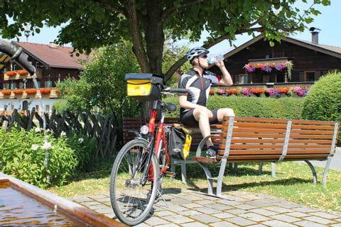 Radfahrer macht Pause auf einer Bank unter einem Baum