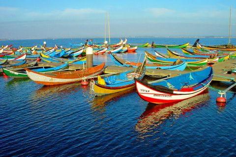 Bunte Fischerboote im Hafen von Aveiro