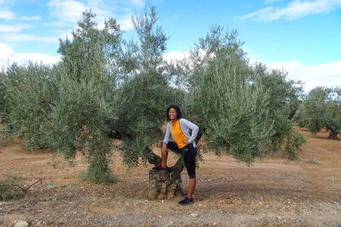 Fatima neben Olivenbaum
