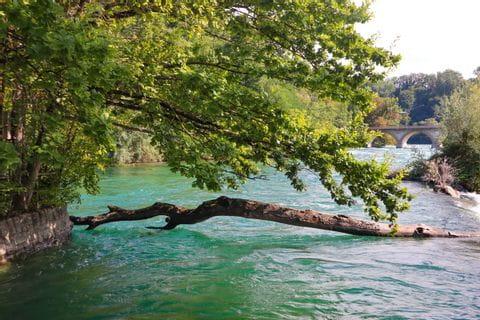 Fluss Rheinfall in Schaffhausen