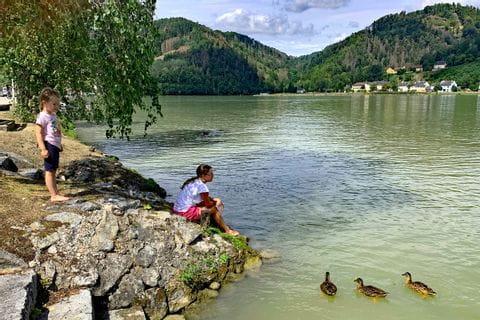Kinder beim Enten füttern an der Doanu