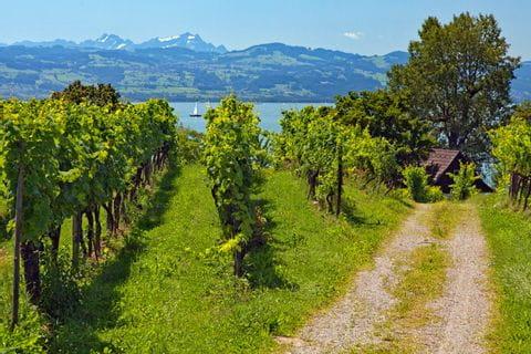 Lake Constance - Lindau
