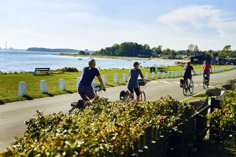 Cyclists on the shore