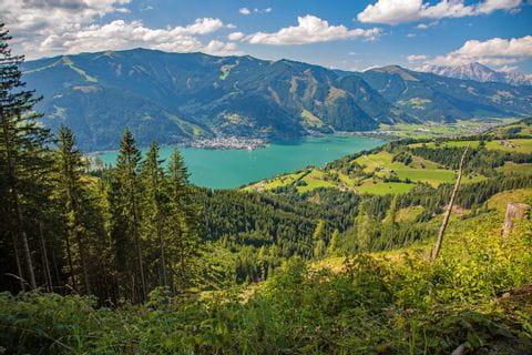 Blick über die Wälder auf den Zellersee