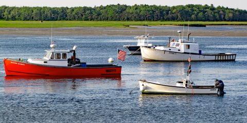 Bunte Schiffe auf dem Main