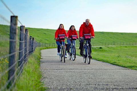 Radfahrer in Pilsum