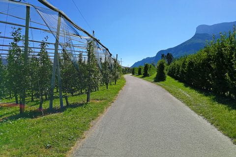Fruit farm close to Lana