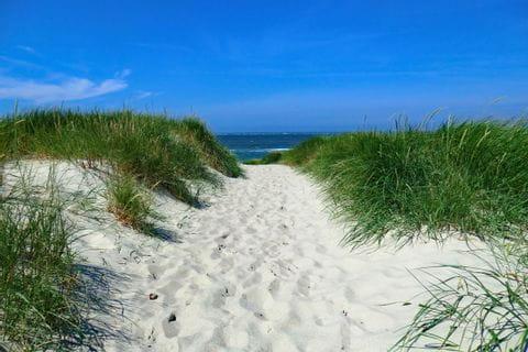 Dünenweg zum Strand in Nordfriesland