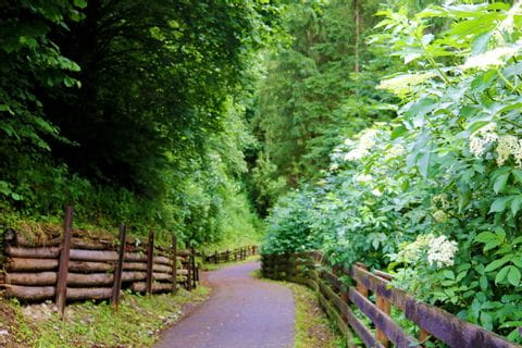 Cycle path near Judenburg