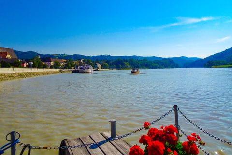 Steg mit Blumen an der Donau