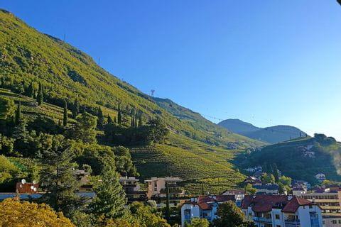 Wine yards around Bolzano