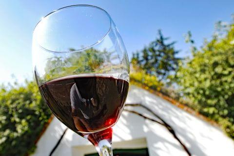 Glas Rotwein vor blauem Himmel und Bäumen
