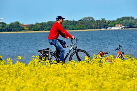 Cycling between Rapsfeld and Lake on the cycle path from Berlin to Rostock