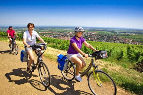 Radfahrer auf den Hügeln der Weinroute