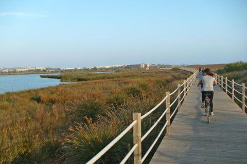 Radweg an der Küste entlang