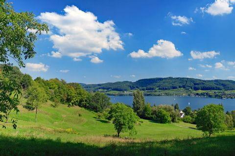 Blick auf grüne Landschaft und den Bodensee