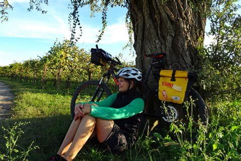 Radfahrerin unter Baum