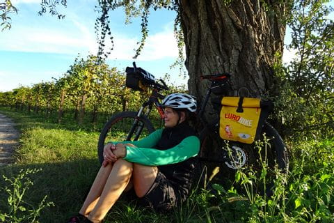 Cyclist under a tree