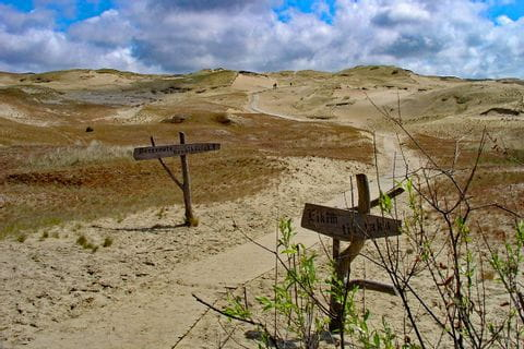 Path through the dune on Curonian Spit