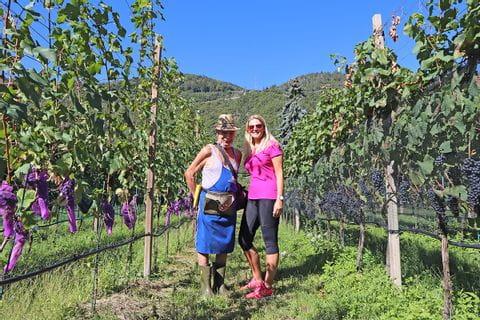 Mit dem Winzer im Weingarten in Südtirol