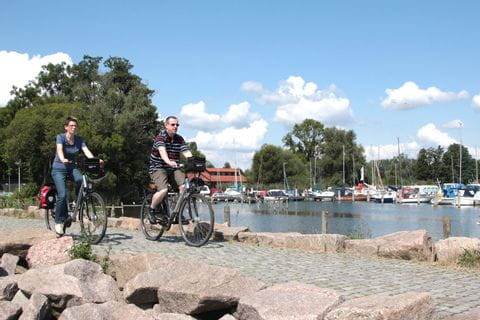 Cyclists in the port of Rostock