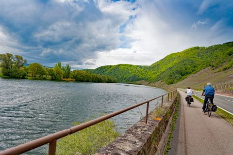 Cyclists along the river Moselle