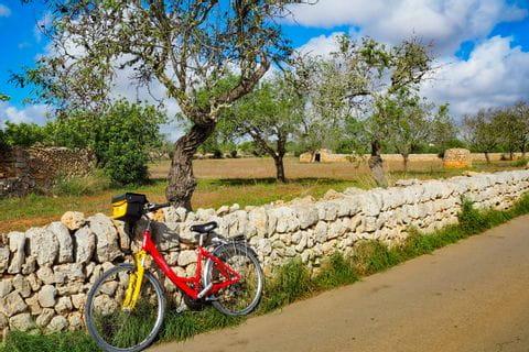 Radweg entlang wunderschöner Steinmauern