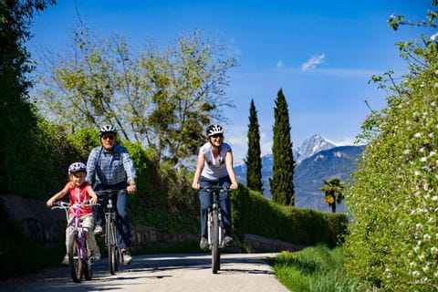Family cycling in South Tyrol