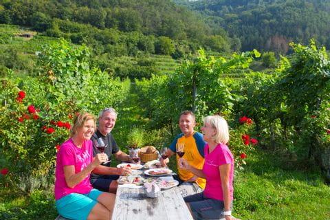 Radfahrer genießen Jause in Weingärten Wachau