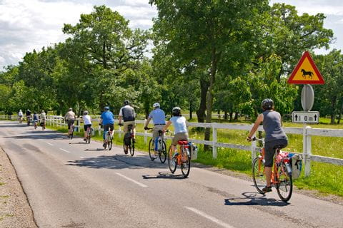 Cycling group on the Smaragd route