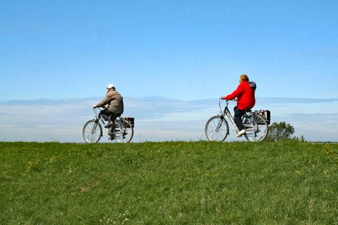 Cyclists in Zeeland