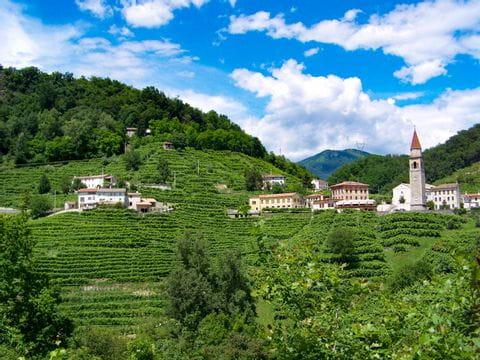 Landscape in the Prosecco region