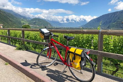 Bike and wine in Bolzano