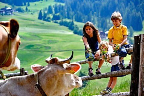 Kinder auf der Weide am Etsch-Radweg