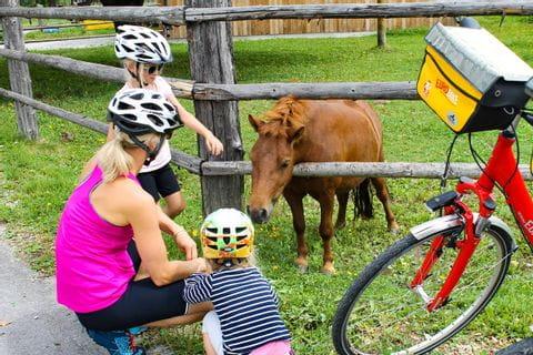 Familie beim Ponyfüttern