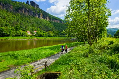 Elbe Cycle path in Bad Schandau
