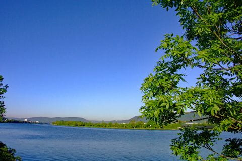 View on the river Moselle