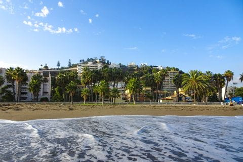 Palmen am Strand von Malaga