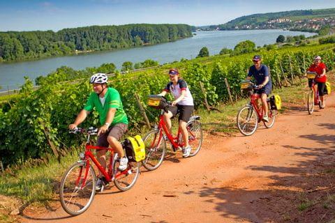 Eurobike cyclists on cycle path near Nierstein