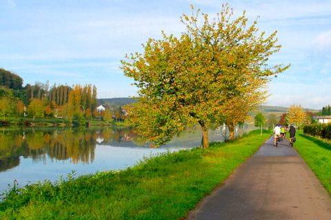 Mosel Radweg im Herbst