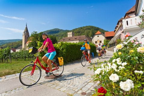 Cyclists in the Wachau valley